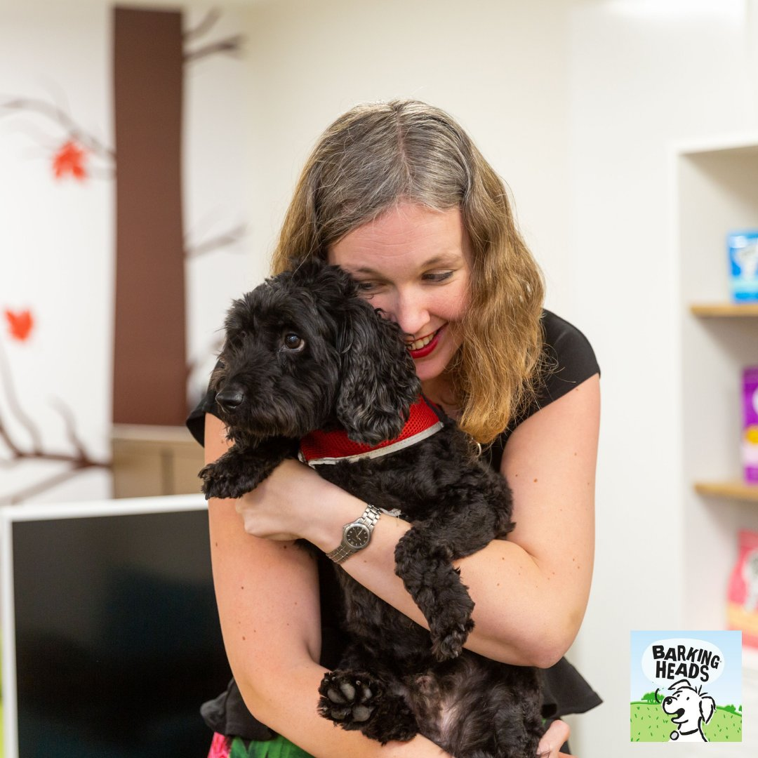We're feeling the four-legged love and celebrating the joys of dog ownership on World Animal Day. Well, maybe it's not ALL joy…but no pup's perfect, right? https://t.co/1pfduiqahZ #BarkingHeads #DogFood #HealthyDogFood #DogLovers #LoveMyDog  #WorldAnimalDay #Cockerpoo https://t.co/iJripcjcAF
