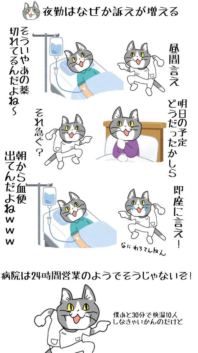 #現場猫 #看護師 銀行業務くらいのイメージでいてほしい。