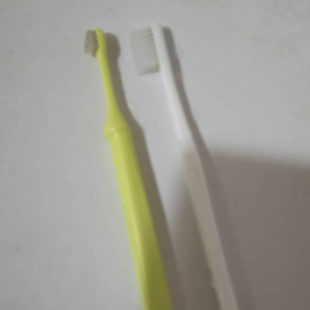 今日やっと、インプラント治療二本終わりました❗️長かったなぁ~😱お姉ちゃん(猫用)の歯ブラシと比較。汚いから買わんと❗️前に間違えてお姉ちゃん(猫用)の歯みがき粉で磨いたことも…あったなぁ😅