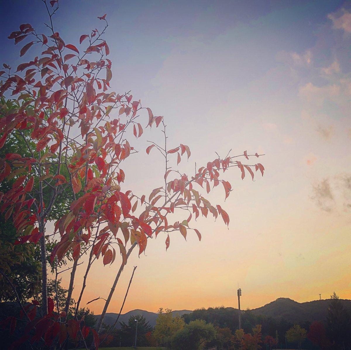 昼頃から晴れ始めた、#岩手県北 #葛巻町 の夕方🌆日が沈み始めると、寒さも感じてきました🍃皆さま今日も1日お疲れ様でした😊感謝の気持ちで明日も大丈夫👌笑顔で、『やれば出来る‼️』🤩#イマソラ #岩手県 #日々感謝 #日々笑顔 #お墓 #墓石 #墓石業者 #石のヤマカタ