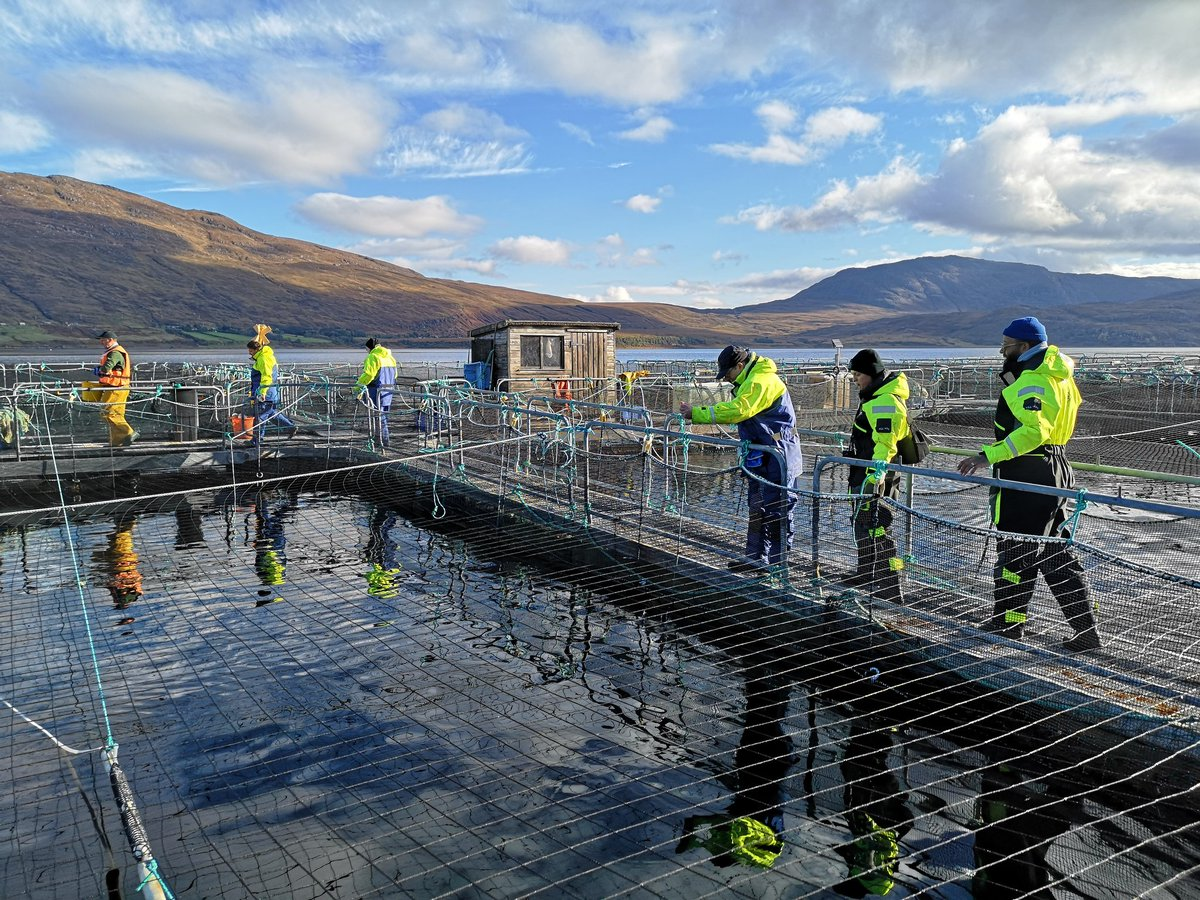 Great morning introducing people to Scottish salmon farming #ScotlandLovesLocal #ScotlandIsNow