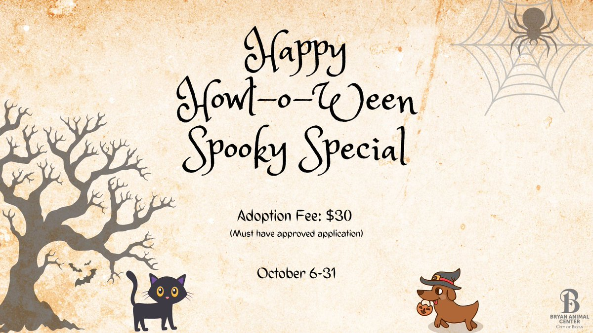 We are having a spooky special for the month of October. All animals are only $30 to adopt. Come adopt your trick or treat buddy before it's too late!  #October #Adopt #Bryananimalcenter #CityofBryan #trickortreat #HalloweenMonth #Rescue #Adoptionspecial