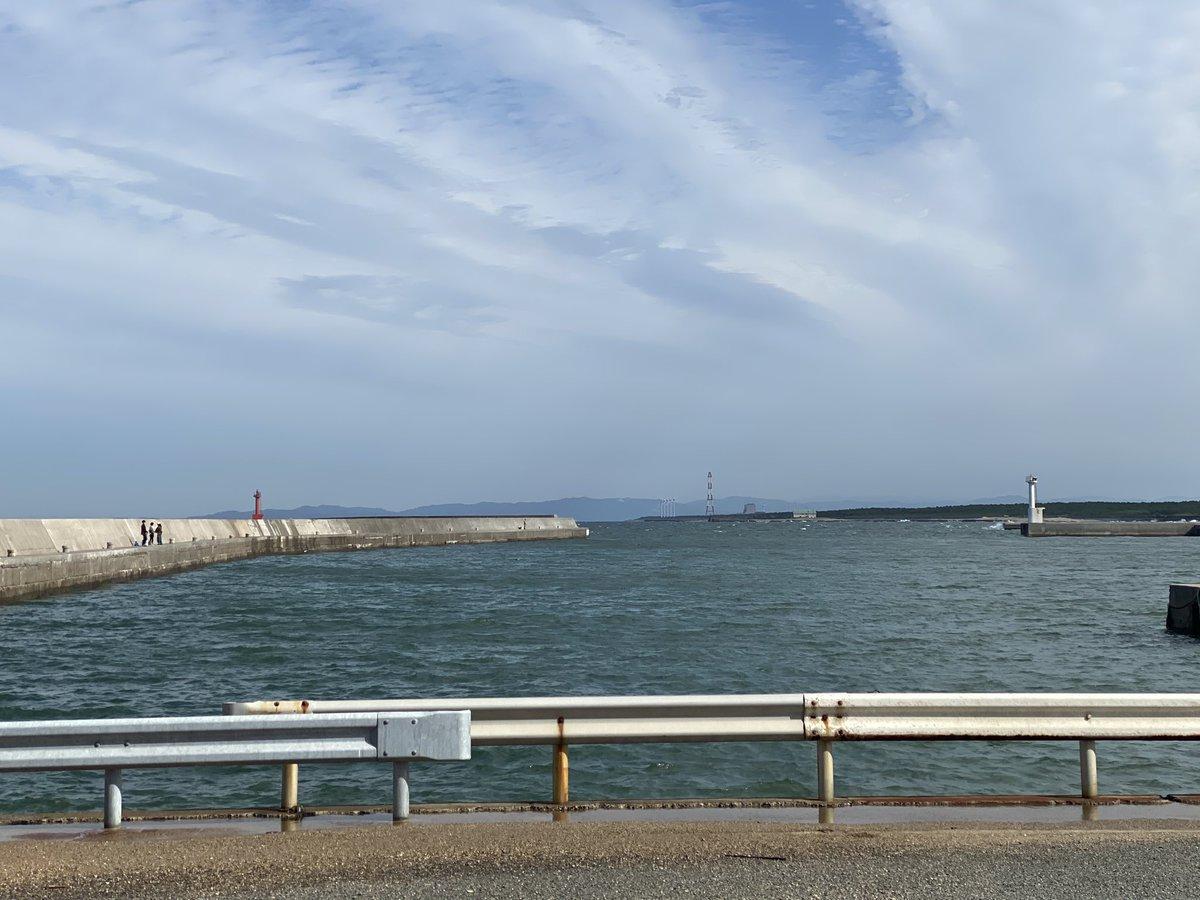 伊良湖 岬 釣り