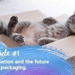 Image for the Tweet beginning: #TrendsAlert 🐱 Pet humanisation is