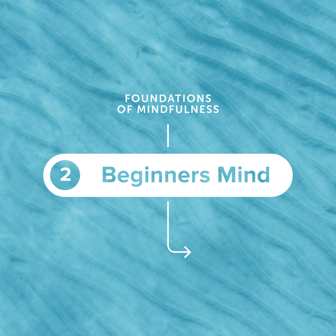 Muse Meditation Teacher Palma Michel @Herenowalltime, CEO Coach and Host of the Explorer's Mind Podcast, provides practical tools to help you refresh your sense of curiosity and wonder in the world. #meditation #mindfulness #beginner'smind #meditationapp   https://t.co/myObZ8l2dz https://t.co/Ckew9N4brH