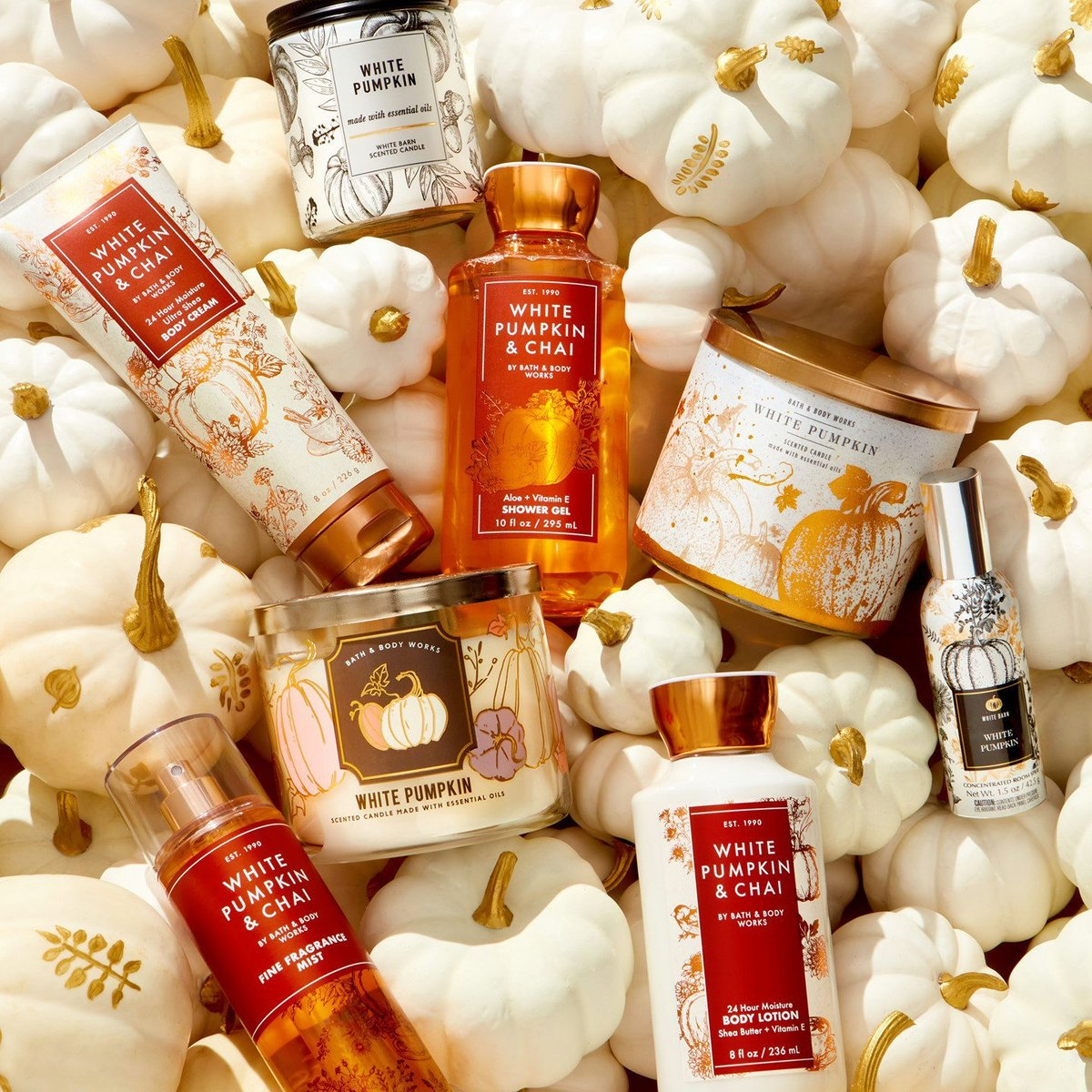 Show of hands 👐 if you're picking up  🆕 White Pumpkin & Chai to add to your collection of White Pumpkin EVERYTHING! 🧡 🤍 https://t.co/PGD8CR5kiS