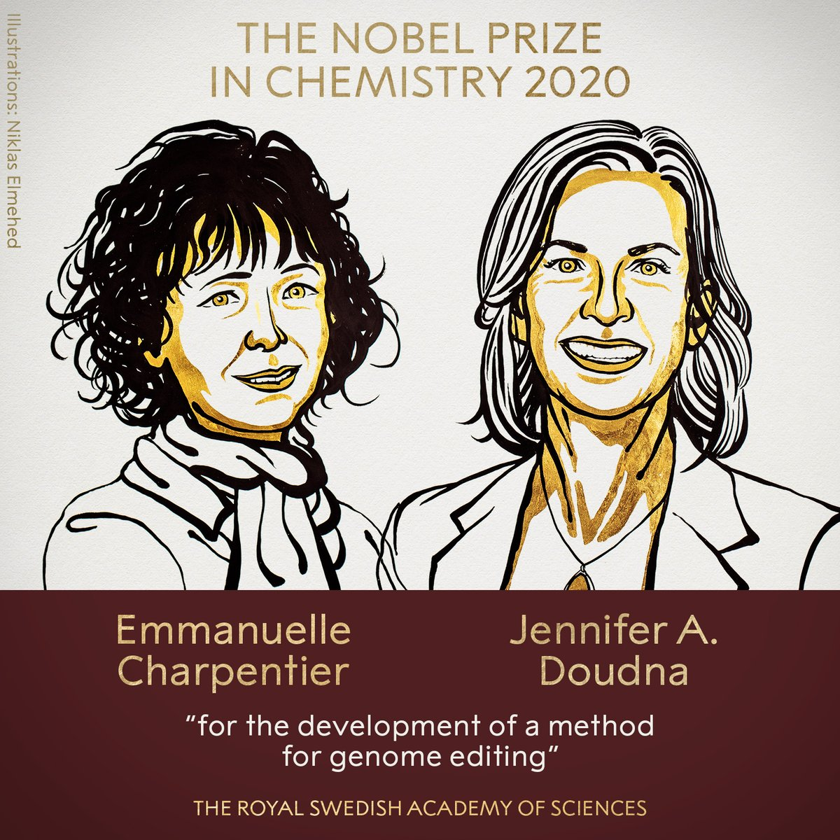 """BREAKING NEWS:  The 2020 #NobelPrize in Chemistry has been awarded to Emmanuelle Charpentier and Jennifer A. Doudna """"for the development of a method for genome editing."""" https://t.co/CrsnEuSwGD"""
