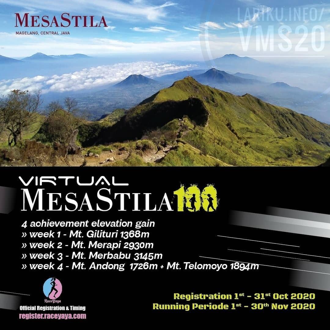 Virtual MesaStila100 • 2020