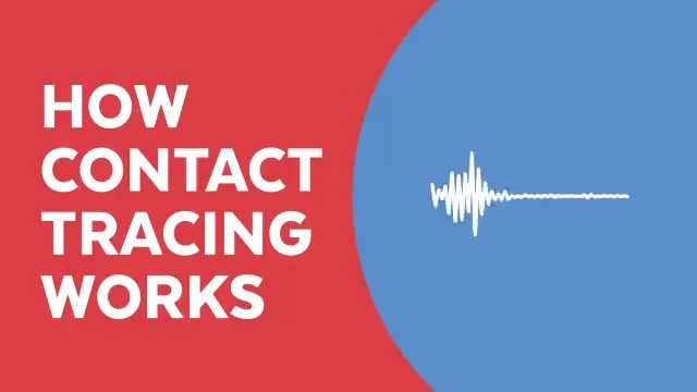 How does contact tracing for COVID-19 work?