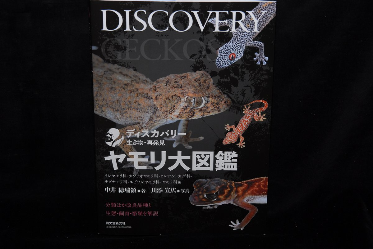 """Gecko Market on Twitter: """"今回も献本していただきました。まぁ、多種 ..."""