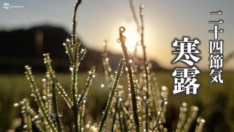 今日10月8日は二十四節気「寒露(かんろ)」で、夜が長くなり草花に冷たい露がつく頃とされています。実際はどのような時期なのか、ご紹介していきます。 weathernews.jp/s/topics/20201…