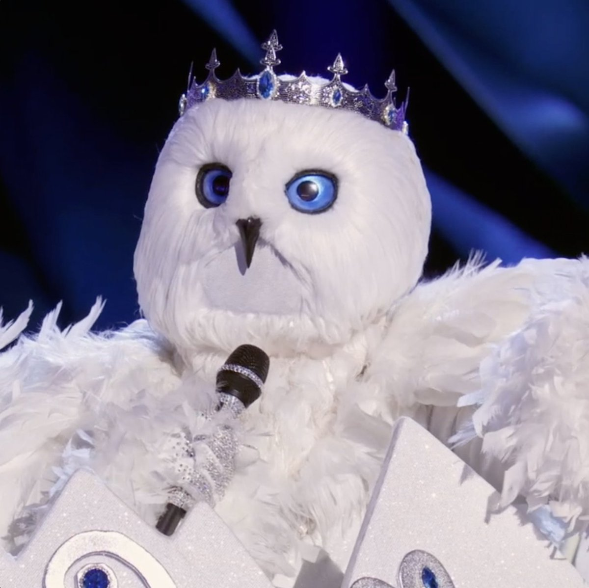 @MaskedSingerFOX's photo on #SnowOwlsMask