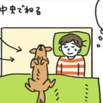 愛犬と一緒に眠るにはやや狭いベッド!セミダブルに変え、これでゆったり眠れると思いきや・・・!