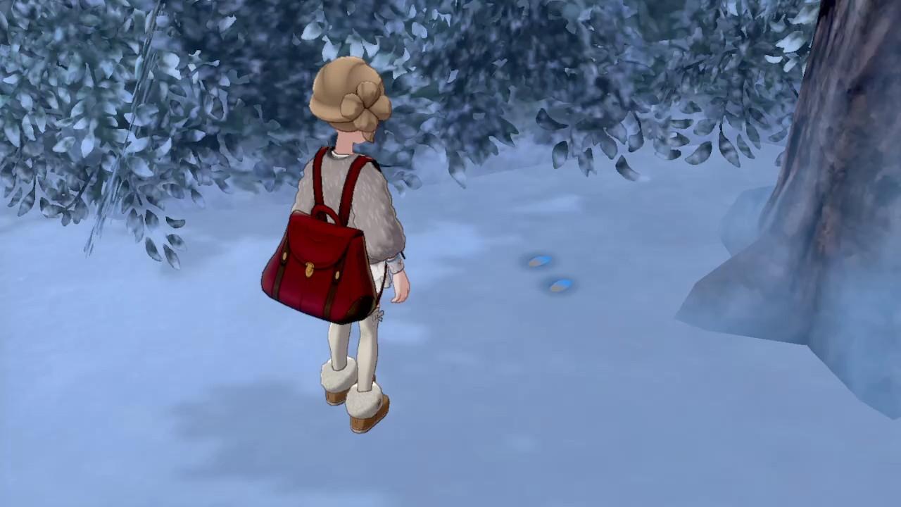 足跡 雪原 冠 の