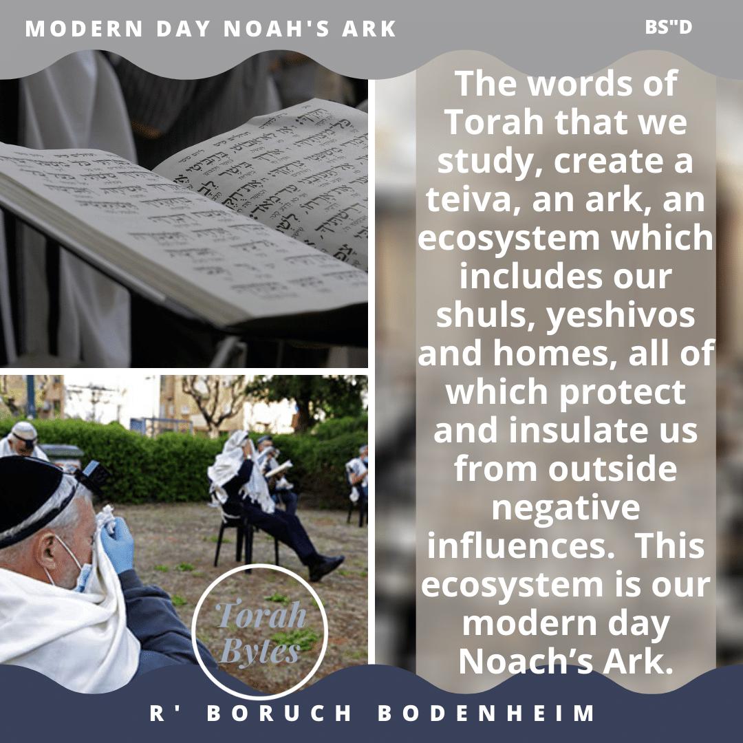#noah's_ark #teivah #shuls #yeshivos #beis_haknesses #ravbodenheim https://t.co/FyURl29bQG