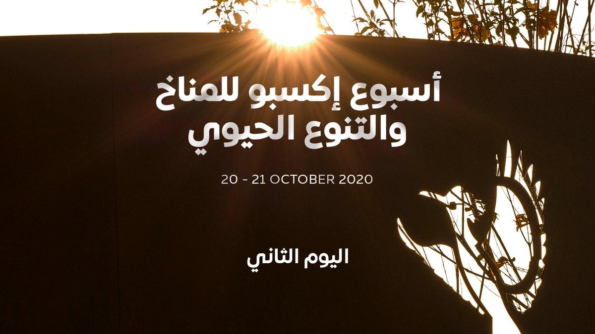 إنه اليوم الثاني من أسبوع إكسبو للمناخ والتنوع الحيوي! تعرّفوا على أحدث الحلول من أجل كوكب أكثر استدامة وصحة 🌍 على لسان خبراء من شتى أنحاء العالم. لمشاهدة الجلسات، تفضلوا بزيارة الرابط الآتي https://t.co/k3hRI96vzy #إكسبو2020 #دبي #الإمارات https://t.co/s8ovsCbBtB
