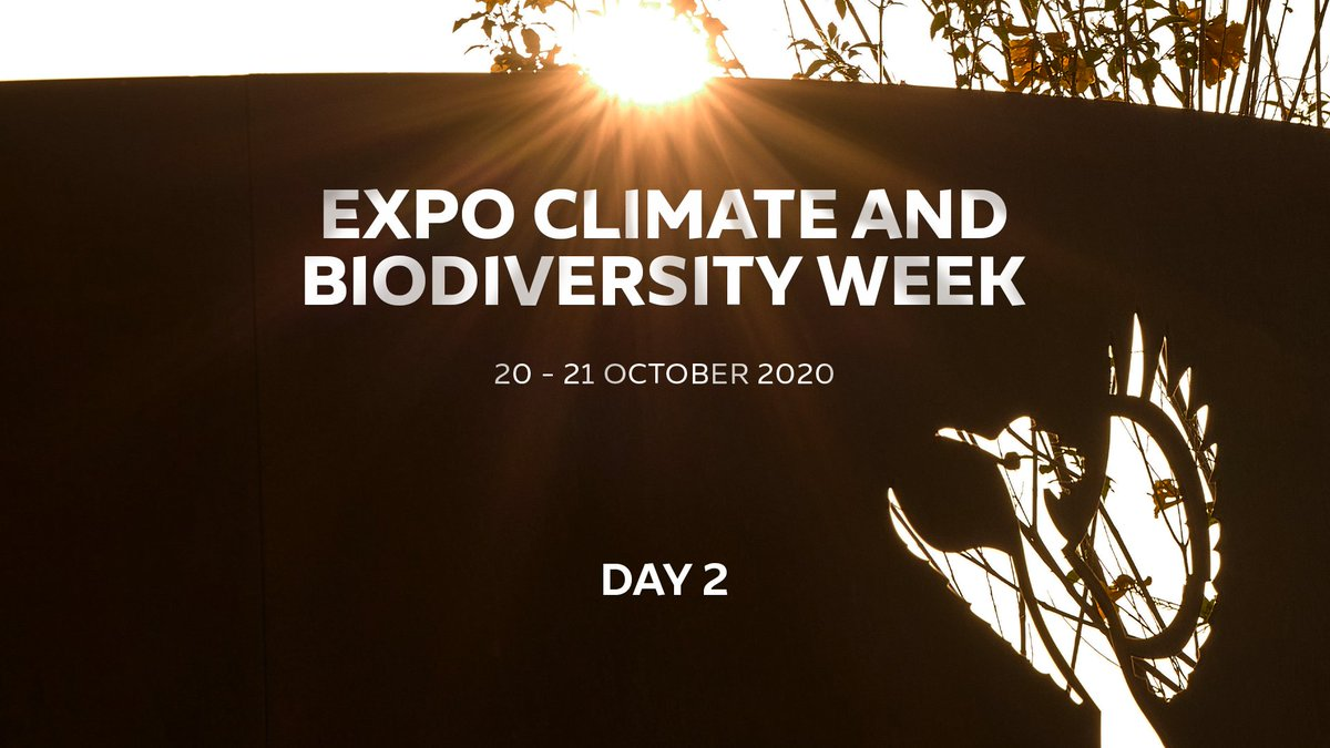It's Day 2 of Expo's Climate and Biodiversity Week! Discover the latest solutions for a more sustainable and healthier planet 🌍 from experts brought together from all around the world. To watch the sessions, visit https://t.co/y7uAWYtfUJ #Expo2020 #Dubai #UAE https://t.co/UTCt553wmy