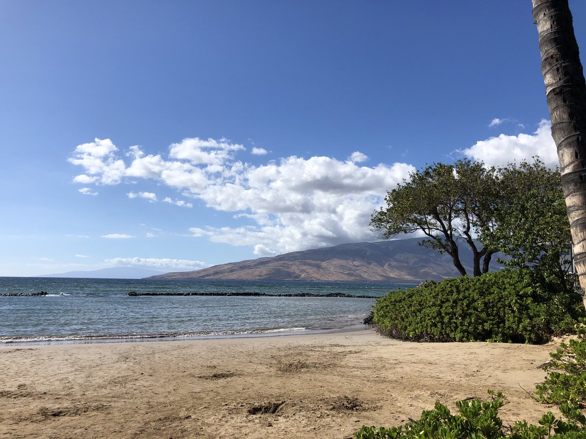 test Twitter Media - Warm and breezy on the southside. #CMWeather #Maui #Kihei #MagicalMaui #MauiNokaoi https://t.co/RiElf8rIAT
