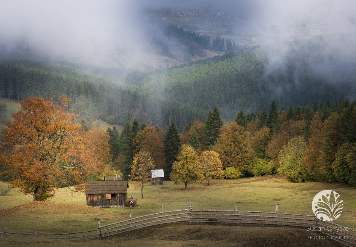 - https://t.co/EGi9305ZTC - #susanonyskophotography #nikonnofilter #travelphotography #travelphotographer #travelphotographerpro #romania #experience.romania #fineartlandscape #falltrees #fineartlandscapephotography #autumn #bucovina #landscape #landscapephotography #foggyday ... https://t.co/MXYGFzXX9q