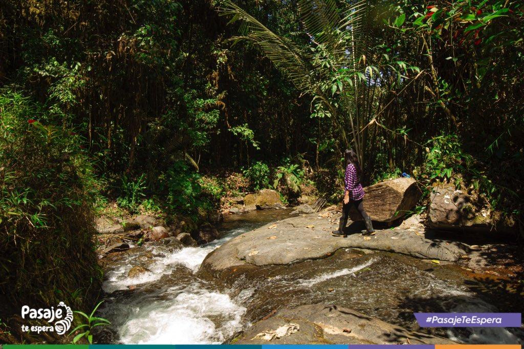 ¿Sabías que el turismo de naturaleza entra en los conceptos del turismo alternativo?  - Pues te contamos que en el sitio Soledad Comuna lo puedes realizar a través de actividades recreativas, respetando y participando en la conservación de recursos naturales y culturales. https://t.co/ZQk3pRMdqs