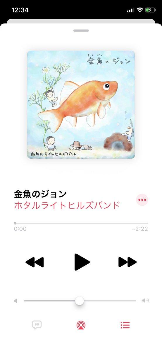 の ジョン 金魚