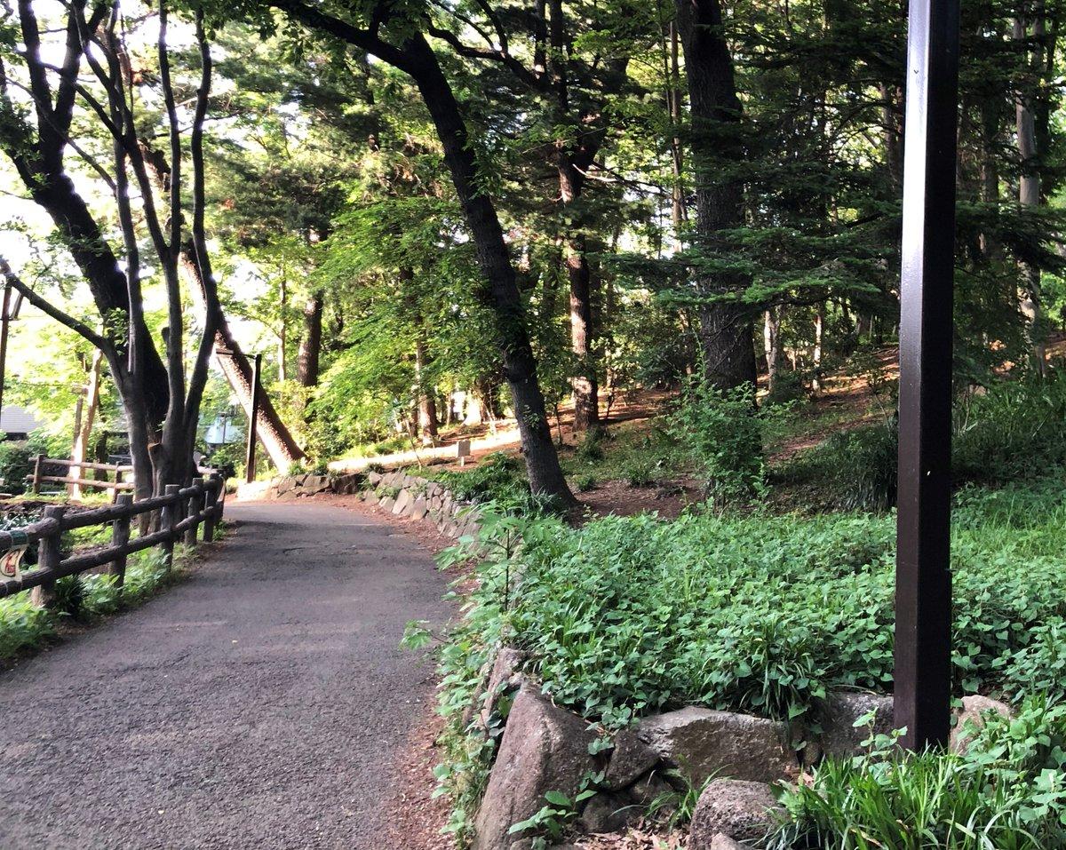 【森の中の家?】 これは近所の公園の写真ですが、このようなイメージの木に囲まれた家にあこがれています。素敵な作り方とか知りたいです。一方気を付けないといけないことも知りたいと思っています。  投稿者:どんぐり  コメントをお待ちしています! https://t.co/DMgNDD0JXf  #ちょい耳 #家づくり https://t.co/EylV5x4QXF