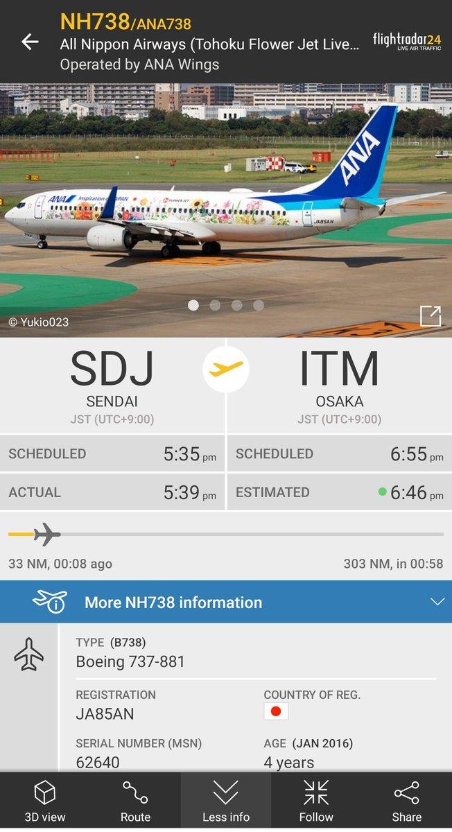 All Nippon Airways NH738 ANA738 from SDJ to ITM B737-800 JA85AN Tohoku Flower Jet 🌹 https://t.co/TwRdDEKjXl