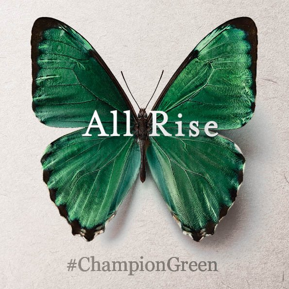 Lot of people deciding to do some shopping today, apparently.  Please, please, please remember to #ShopLocal where possible. Our #PureCork restaurants, hotels, shops and attractions need your support now more than ever.  Support the #ChampionGreen and #PureCorkOnline initiatives. https://t.co/uaHSKjGdh7