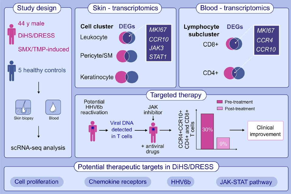 "Dr @BekenBurcin explains the value of #sc-RNA-seq in #drug-induced hypersensitivity syndrome (DiHS) treatment. A new article of ""Groundbreaking Discoveries in #Immunology"". Must-read article in #Allergy_Journal   🔗https://t.co/wklTnZN0B3 https://t.co/Ns8putwk8a"