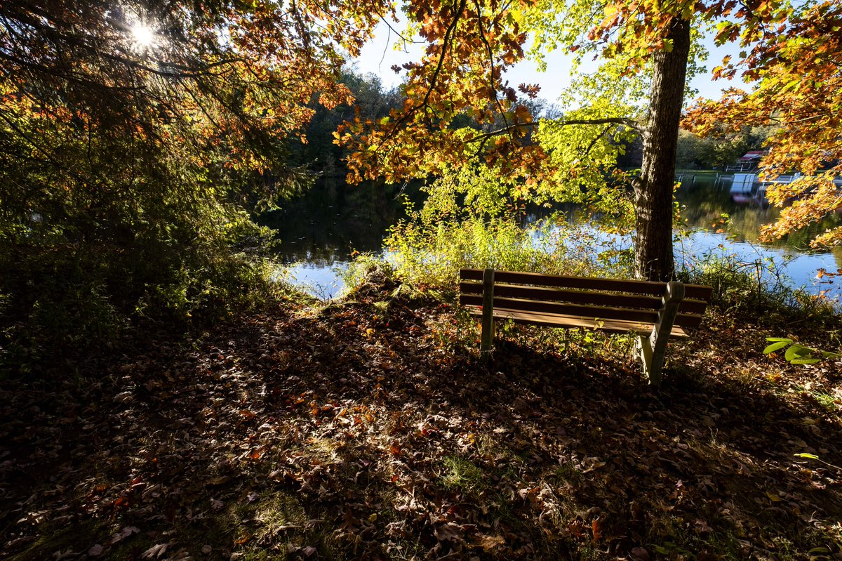 To sit. At the #end of the day. Drinking in the last rays of #light. Filtering through the #colors of #fall. Creating strips of #shadow on the fallen #leaves. #october #water #lake #fujifilm #landscape #afternoon  #color #autumn #fallcolors #bench #photography #trees #story #mood https://t.co/YIsrHWvYof