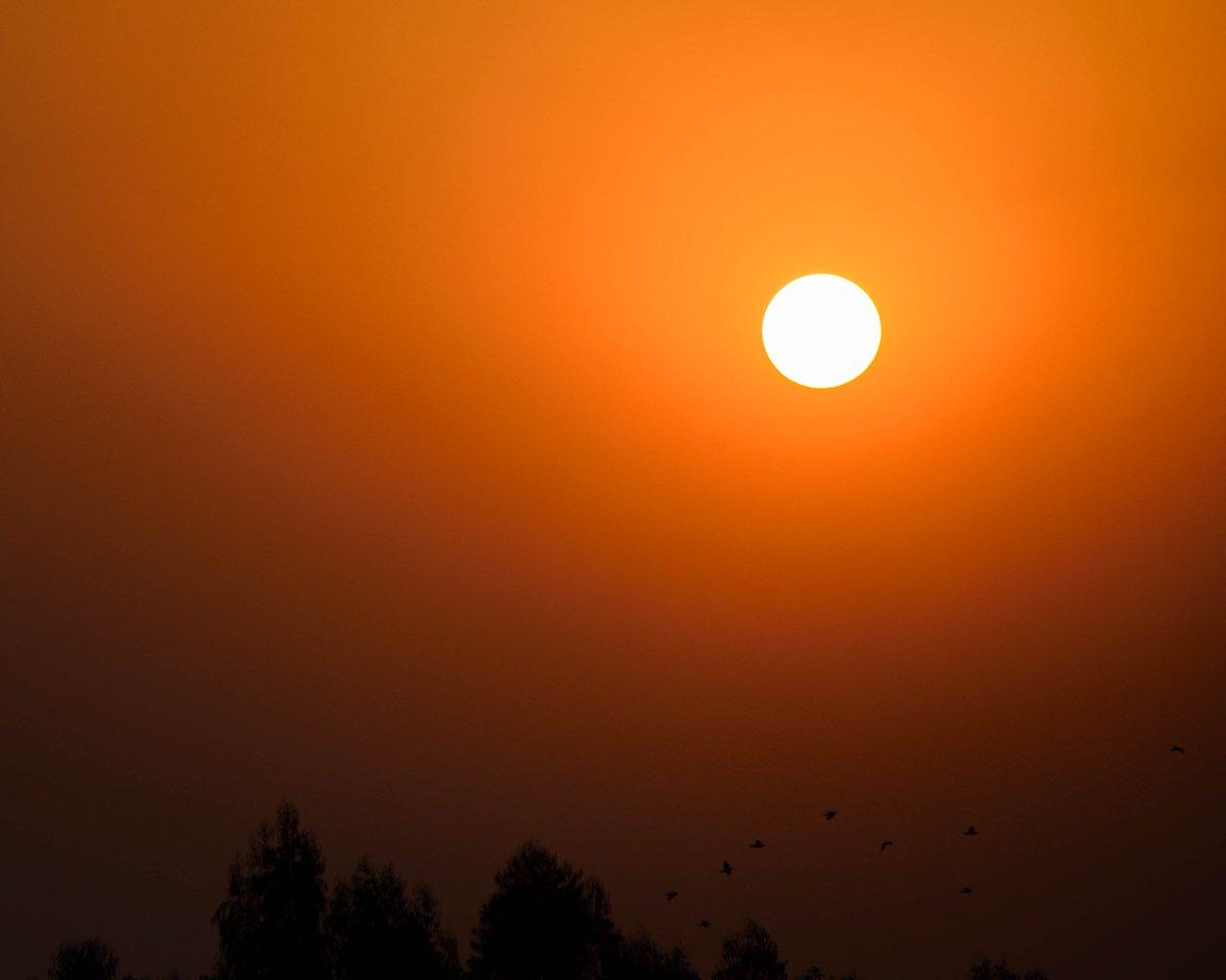Simple beauty1...  .  .  Shot on @NikonUSA d5300 1/1000 f5.6 ISO100 140mm .  .  #sun #sunset #clear #sky #birds #flying #adobe #lightroom #edit #nikon #photography #nature #beauty #orange #temple #silhouette https://t.co/qWbc6EZ2iE