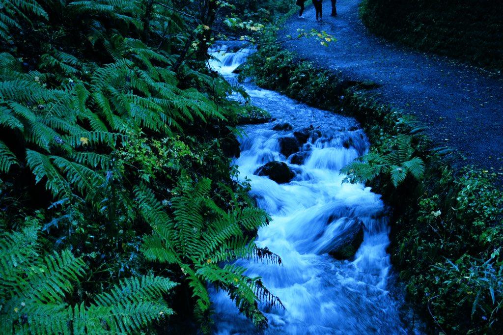 自然は落ち着くな〜😌  #写真 #写真好きな人と繋がりたい #写真撮ってる人と繋がりたい #写真好き #カメラ初心者 #自然 #川 #山 https://t.co/RFvObjZQr0