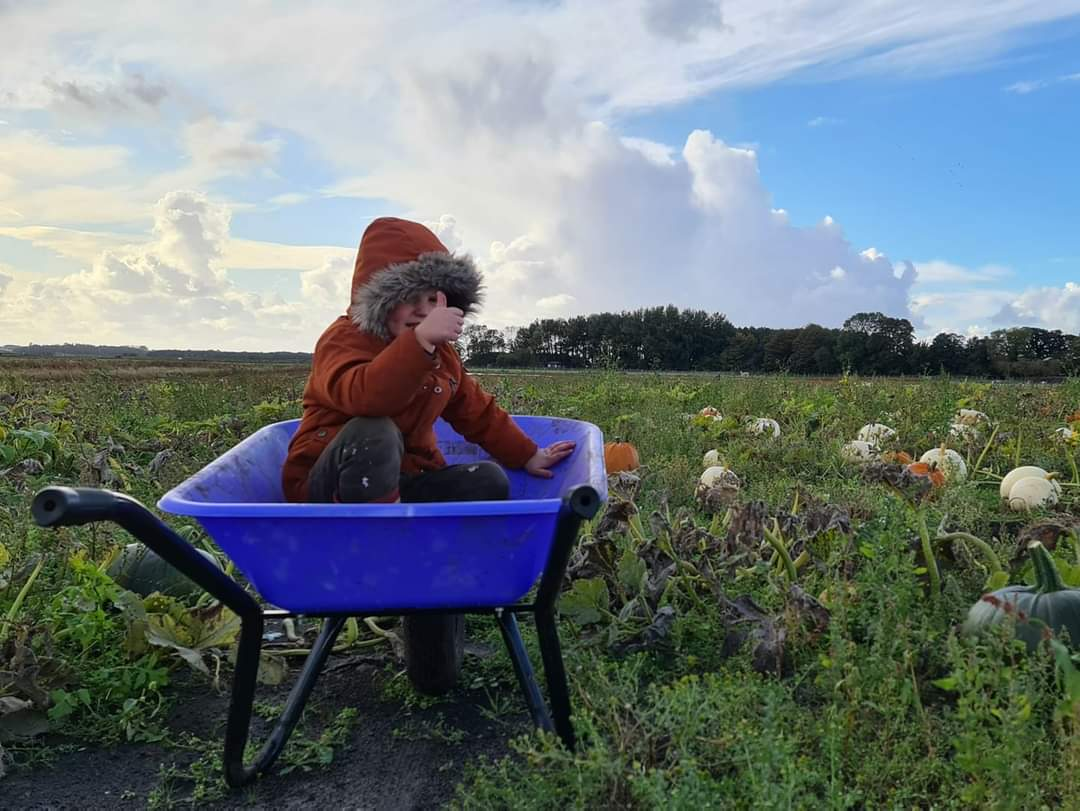Let see those wheel barrow pics!!!!!! There ment for pumpkins not the kids😂 https://t.co/Kd4kDj6zbW 👍  #jobsagoodun #familydaysout #pumpkinpicking #outdoorfun #pumpkin #familytime #makingmemories #booknow #farmlife #autumn https://t.co/mlEiB0Z7yB