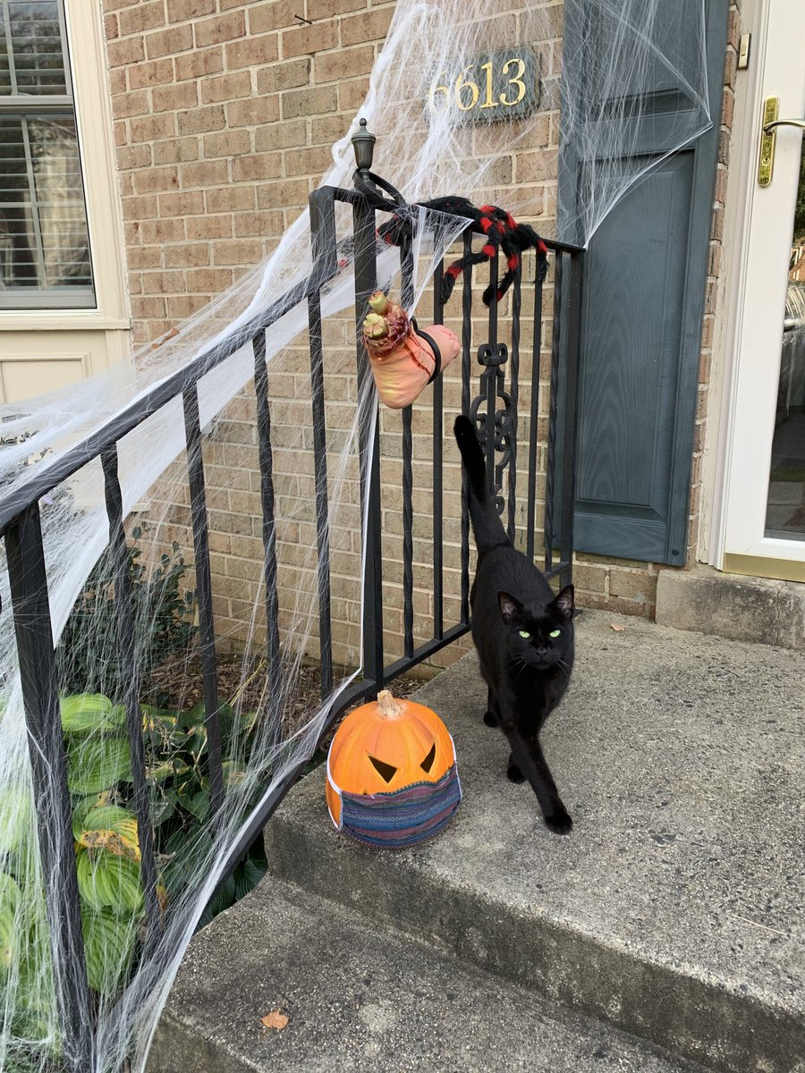 Get away from the screen and get OUTSIDE today <a target='_blank' href='http://twitter.com/APSCareerCenter'>@APSCareerCenter</a> Bike, hike, decorate for Halloween . . . <a target='_blank' href='http://search.twitter.com/search?q=WeAreACC'><a target='_blank' href='https://twitter.com/hashtag/WeAreACC?src=hash'>#WeAreACC</a></a> <a target='_blank' href='http://twitter.com/arlingtontechcc'>@arlingtontechcc</a> <a target='_blank' href='http://twitter.com/ACC_EL_Inst'>@ACC_EL_Inst</a> <a target='_blank' href='http://twitter.com/AcadAcademy'>@AcadAcademy</a> <a target='_blank' href='https://t.co/0tmszMJR8y'>https://t.co/0tmszMJR8y</a>