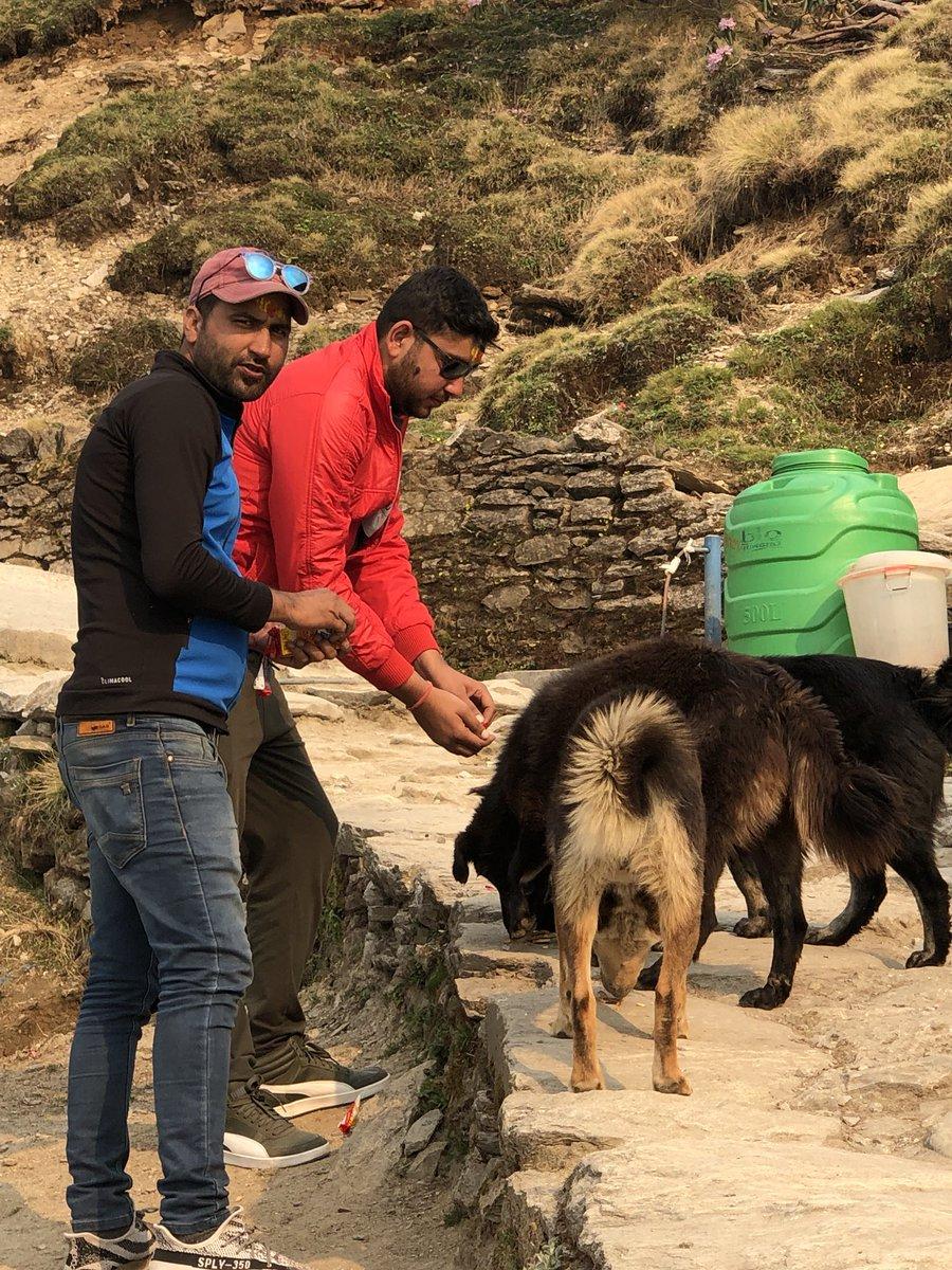 My Trip #TungNath #Chopta https://t.co/qbeROUkcV3