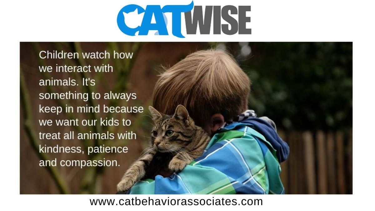 Set a good example. #thinklikeacat #catwise #cats #showkindness #children #pets #bekindtoanimals #parenting #compassion #animals #petsarefamily https://t.co/NBYQRf9rVw