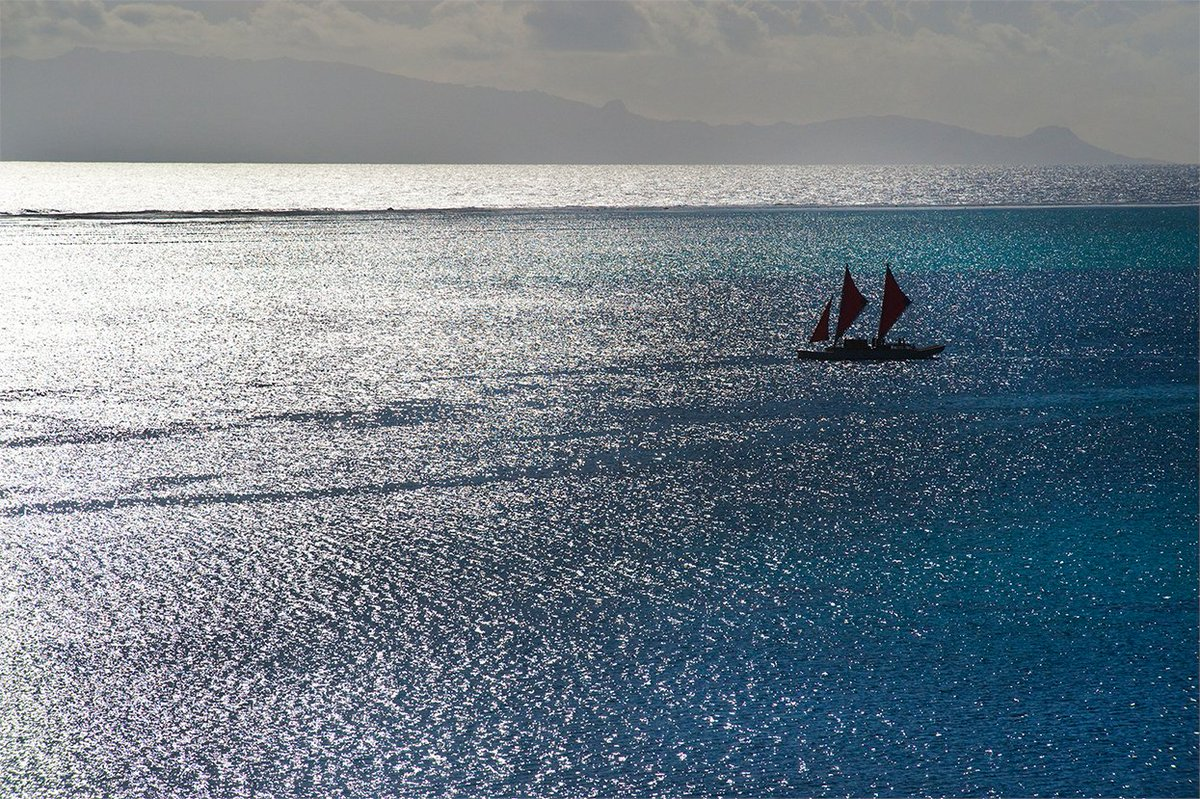 For centuries #cultures throughout the world have traveled by the guiding light of the sun, moon and stars.   In the #Pacific, mariners continue to brave the vast #ocean as their ancestors have for centuries in double-hulled #canoes.  📸 Photo by Danee Hazama https://t.co/iSn24Bt4EL