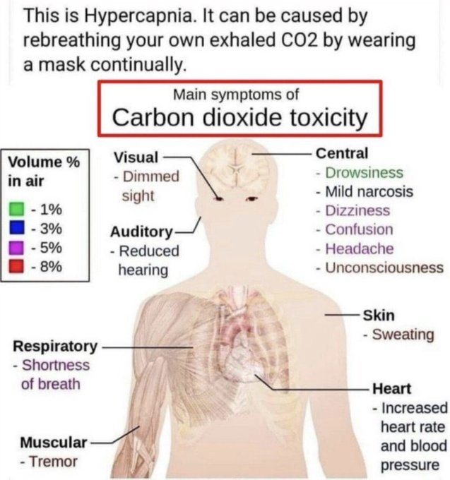 #Masks #WeAreAllBeingPlayed #CrimesAgainstHumanity  Hey #MerseyFire you know all about #CarbonDioxide #Toxicity & the human body👍  Be #Humane educate people on how #carbondioxide #Kills they may listen to you👍 https://t.co/D1n75VFGl2 https://t.co/II4QppXruV