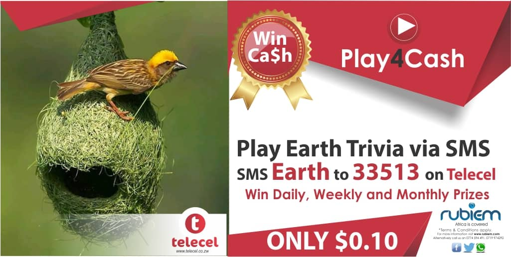 Do not forget to play4cash in the Sms trivia with Telecel!Simply sms Earth to 33513 today.T&C's apply. #play4cash #smstrivia #tellsomeone https://t.co/wJ96CUuBBB