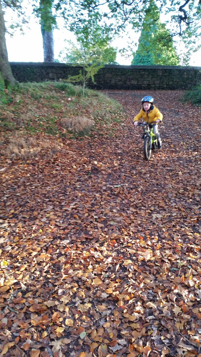 Every child should own a bike......  #freebikes4kids #giving #community #cycling #recycle https://t.co/Lab8jVVuVb