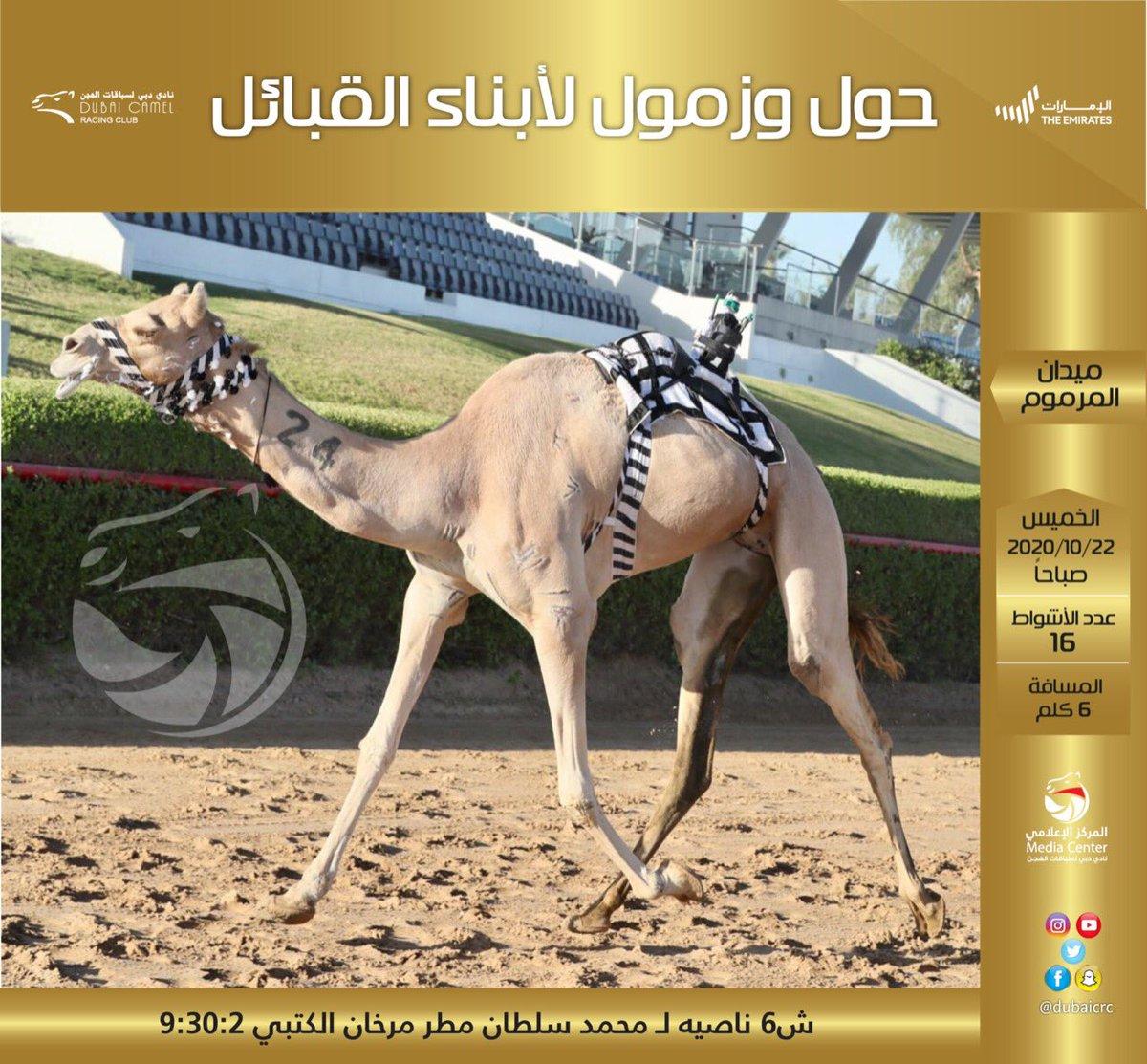 #نادي_دبي_لسباقات_الهجن #المركز_الاعلامي #فزاع #faz3  #almarmoom #Dubaicrc #camel #Racing_club #Dubai #VisitDubai  #uae #Camelrace #sports #fun #camels #heritage #race #tourism #emirates #photography #dubailife #DCRC #mydubai https://t.co/Q07uWF6zxG