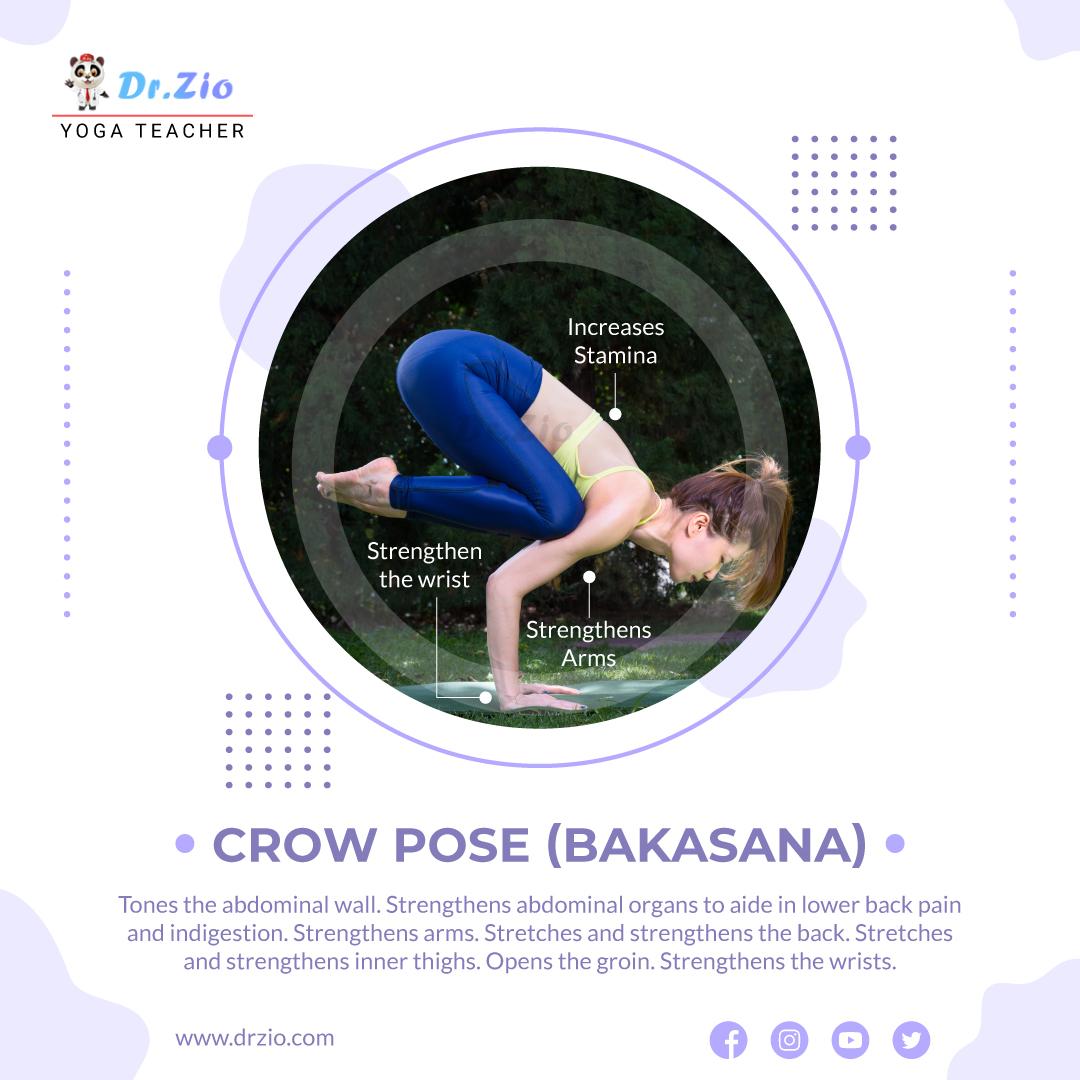 Crow Pose (Bakasana) Yoga Pose  Dr. Zio - Yoga Teacher  #drzio #yoga #fitness #meditation #yogapractice #love #yogainspiration #yogalife #yogaeverydamnday #yogi #mindfulness #yogateacher #yogalove #pilates #yogaeveryday #namaste #workout #motivation #gym #health #wellness #yogag https://t.co/d2qTWzYJCT