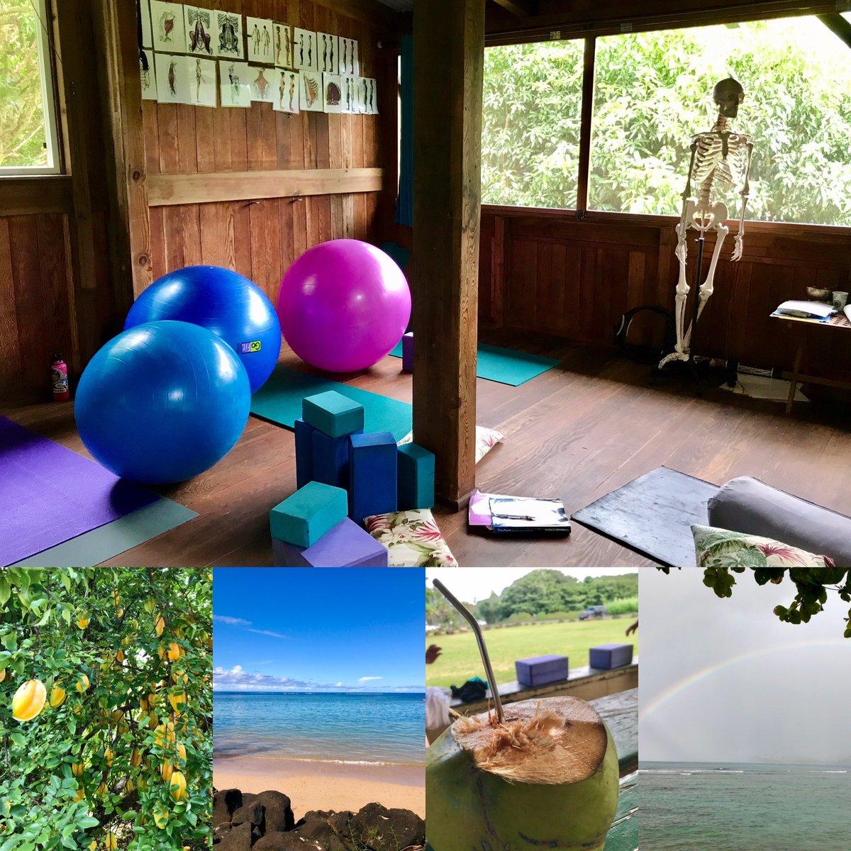Day three of this goodness. #starfruit #yogalign #liquidlife ✌️❤️🌈 #innerbreathyoga #kauai #rainbows #movement #health #fitness #fun #happy #love https://t.co/a0LOmwsG86