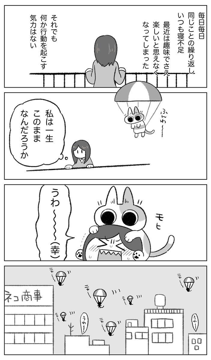 ネコちゃんパラシュート部隊🪂 #パラシュートの日