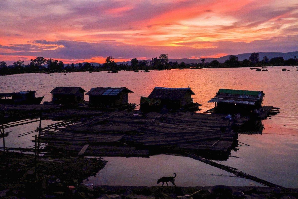 #collection 1-6 #Dog #Myanmar #burma #cthuaungphotography #just_framer https://t.co/XjiRwQQtLp