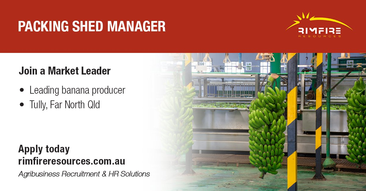 Great opportunity to join the market leader in Banana production and run their premier Packing Shed in Far North Qld. Apply today: https://t.co/sJRAHAaGUo  #packing #manager #banana #queensland #horticulture #agribusiness #jobs #hiring #rimfireresources https://t.co/9If35NCyWM