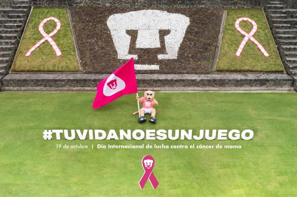 En el Club Universidad Nacional nos sumamos a la conmemoración del Día Mundial de la Lucha contra el Cáncer de Mama.  💻➡️  https://t.co/6ityp4GXJY  #TuVidaNoEsUnJuego 💓 #SoyDePumas https://t.co/EFmJLOFbTt