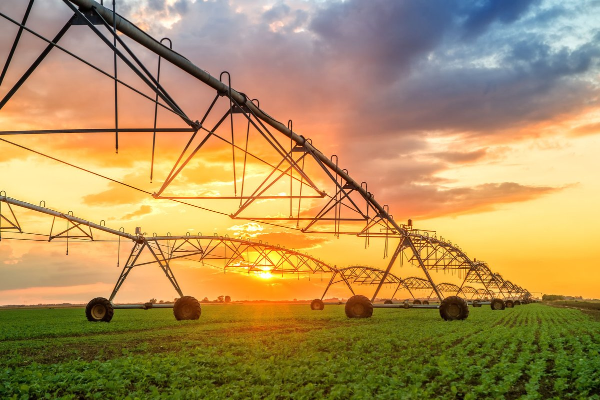 DIVERSIFICATION of the Northern Territory economy, through #agricultural development, is expected to create 150 jobs in the region. #agribusiness #ruralproperty https://t.co/BIHDYtJ5TP https://t.co/Rnn0aLCIQ1