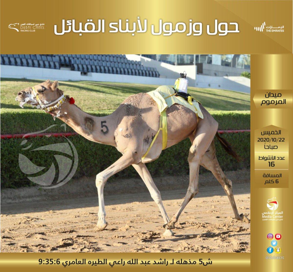 #الاصايل #نادي_دبي_لسباقات_الهجن #المركز_الاعلامي #فزاع #faz3  #almarmoom #Dubaicrc #camel #Racing_club #Dubai #VisitDubai  #uae #Camelrace #sports #fun #camels #heritage #race #tourism #emirates #photography #dubailife #DCRC #mydubai https://t.co/TbgDs3gDHo