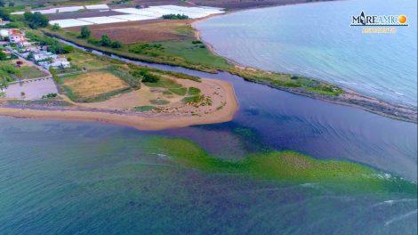 """""""Versare l'olio in mare è un reato ambientale, servono più sanzioni"""", l'appello di MareAmico (FOTO e VIDEO) - https://t.co/4MX4dKUpXE #blogsicilianotizie"""